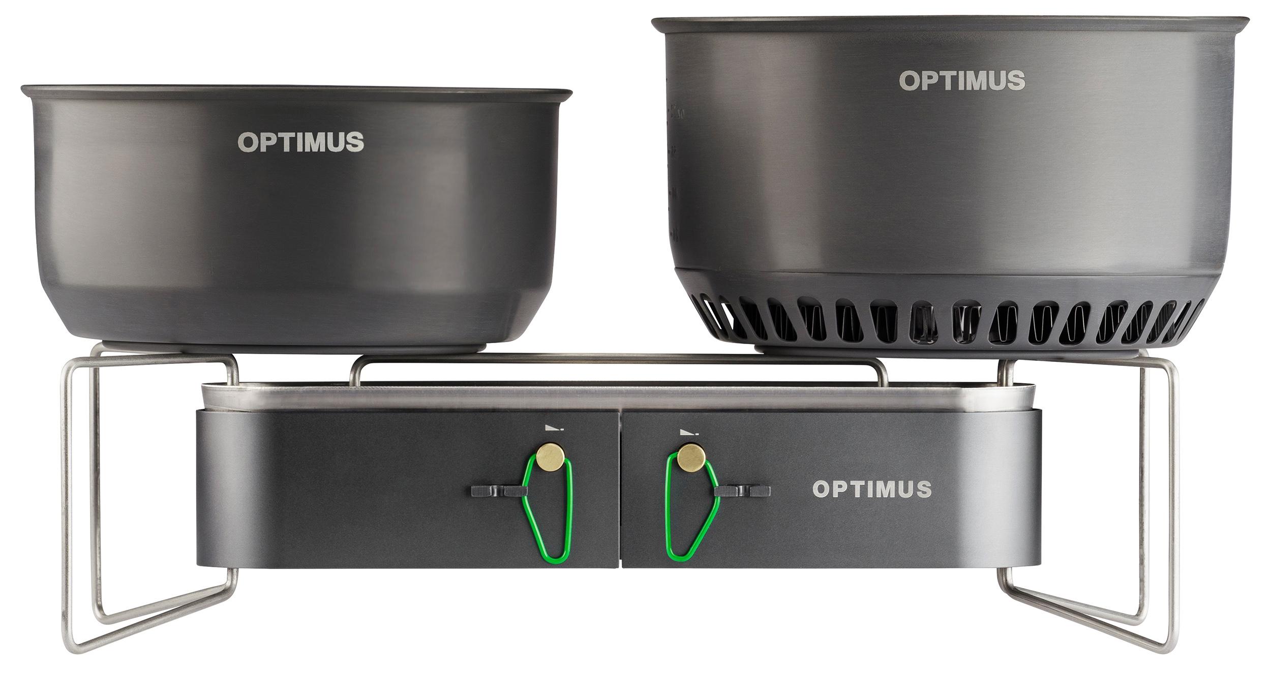 Optimus Gemini